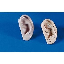 Akupunktur-Ohren, 2er Set
