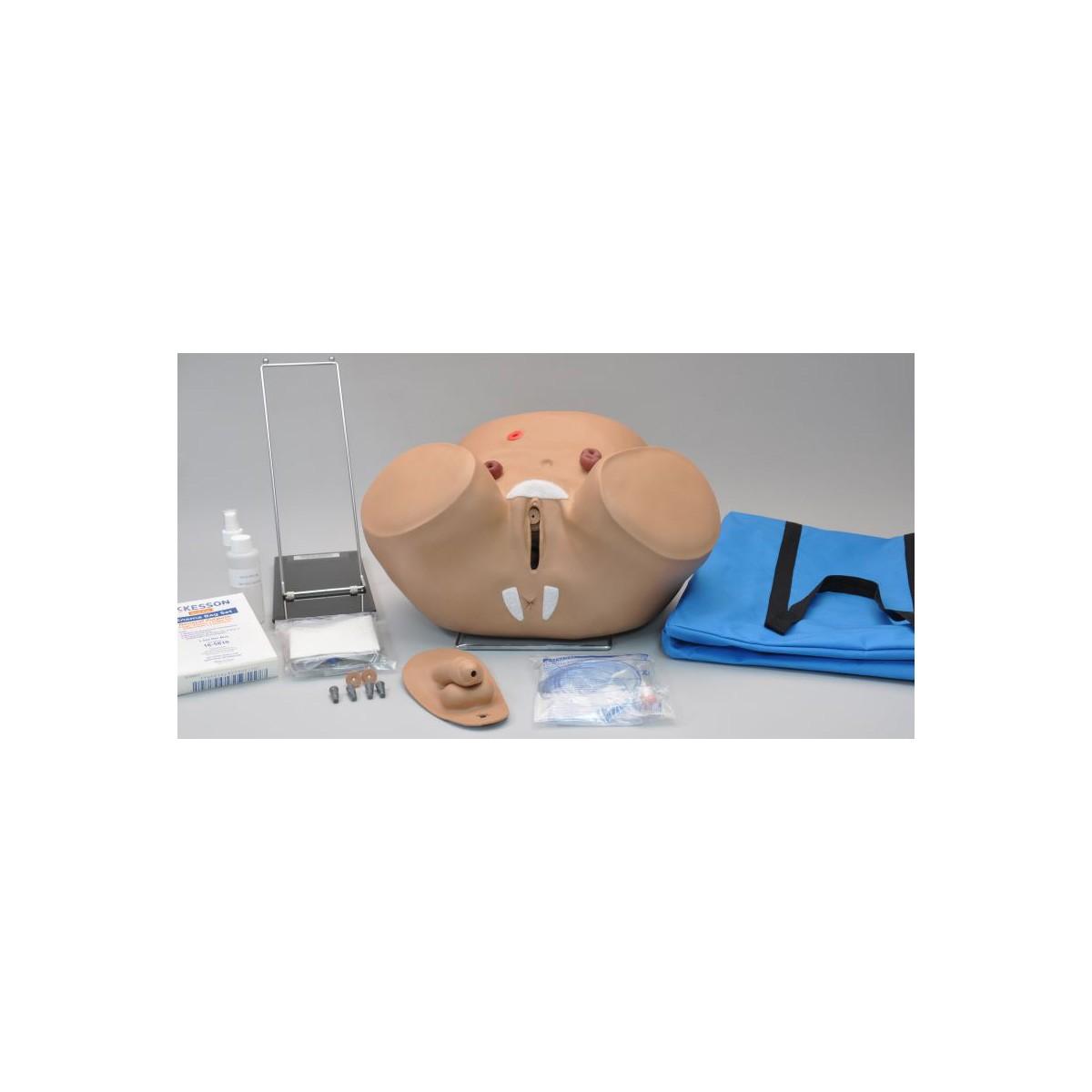 Katheterisierungs- und Stomapflege-Simulator, männlich und weiblich