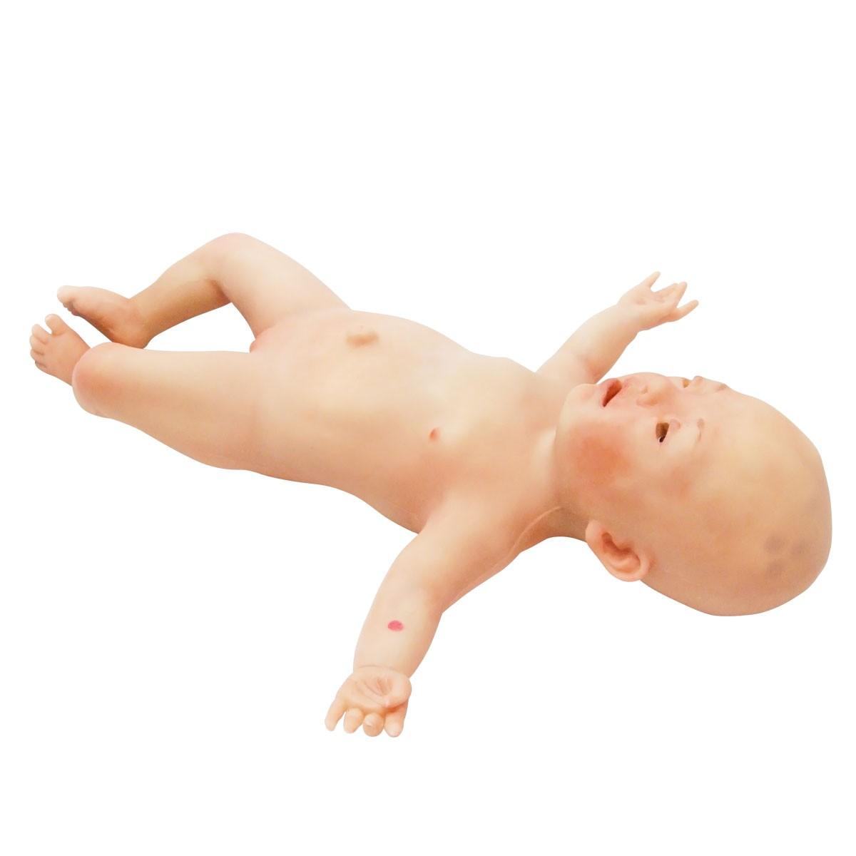 NENAsim- Neugeborenensimulator