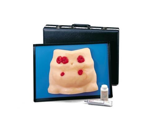 Stomapflege-Simulator