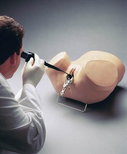 Hysteroskopie-Simulator