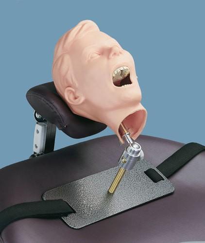 Pädiatrische Dental-Röntgen-Puppe