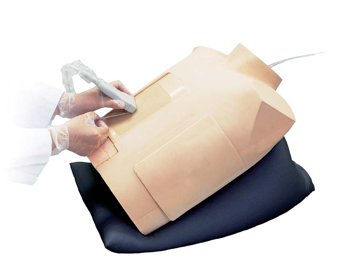 Perikardiozentese Simulator mit Ultraschallunterstützung 1