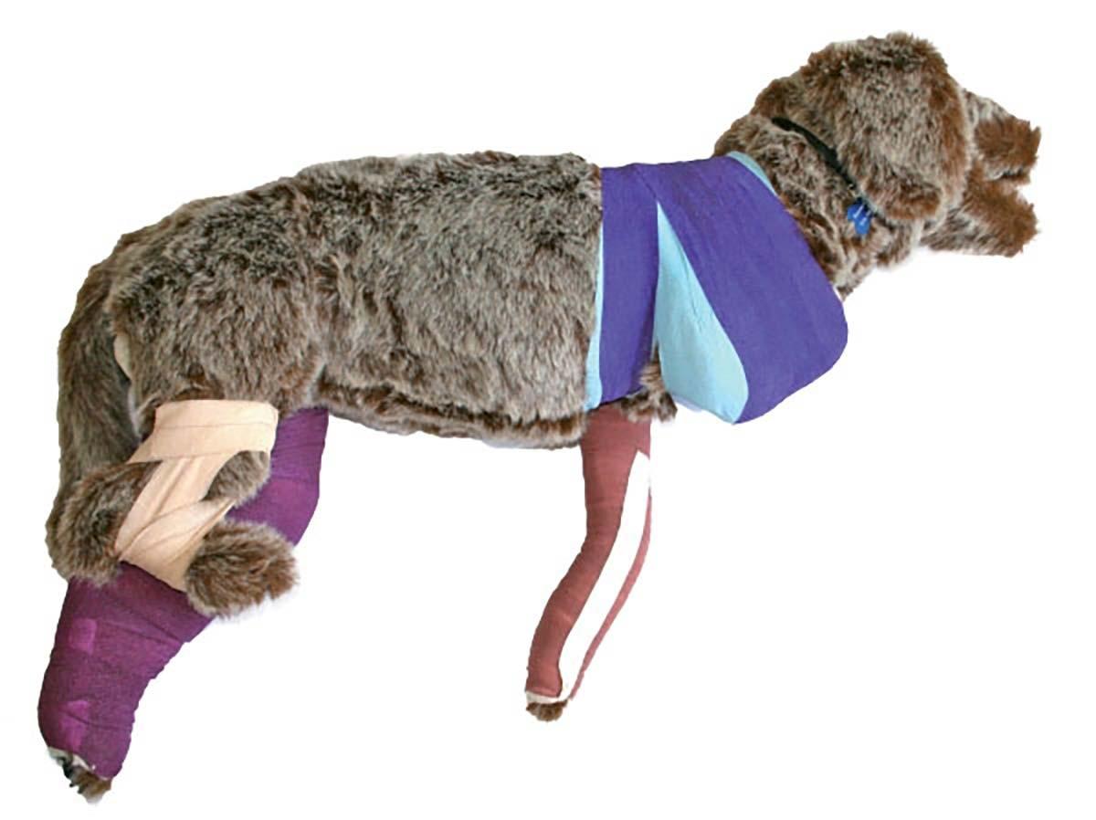 Verbandtrainingspuppe Rufus