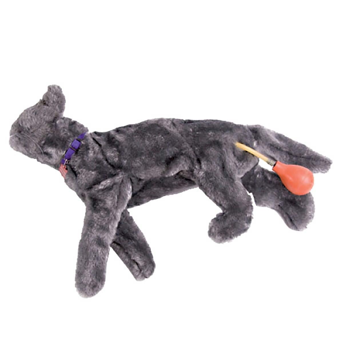 Fluffy Katzen-HLW-Übungsmodell