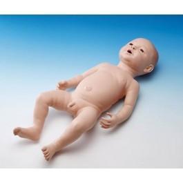 Neugeborenen-Modell, männlich