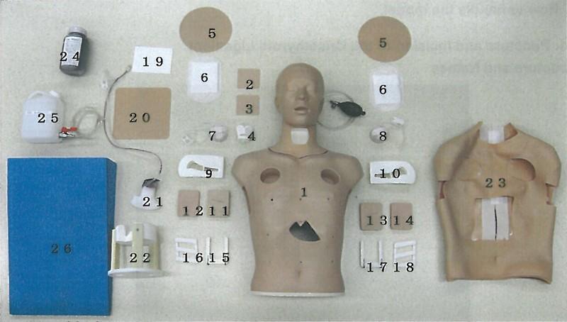 Thoraxdrainagestelle rechts, mit Schnitt für Thorax-Trauma-Simulator