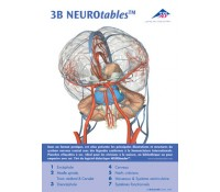 3B NEUROtables™ Deutsch