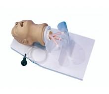 Intubationstrainer