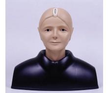 Augen-Untersuchungs-Simulator