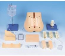 Lumbalpunktions-Simulator