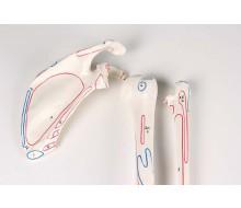 Skelett, unmontiert, mit Muskelmarkierung (Kochensammlung) 1