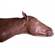 Pferde-Gefäßzugangs-Simulator 1