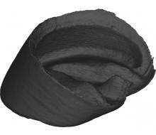 Hornkapsel