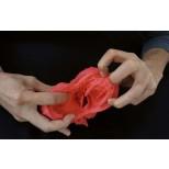 Herz flexibel, didaktische Ausführung 2