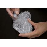 Herz flexibel, didaktische Ausführung, transparent 2