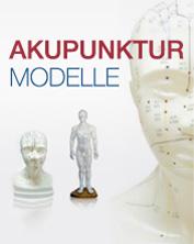 Akkupunktur Modelle