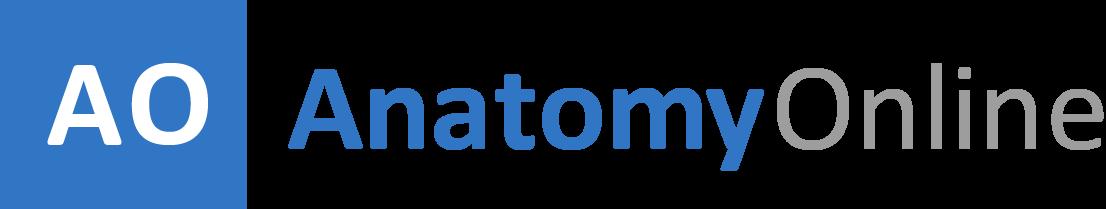 Anatomy-Online.com